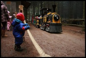 Sherri Dale's photo of a train from Emerald Acres