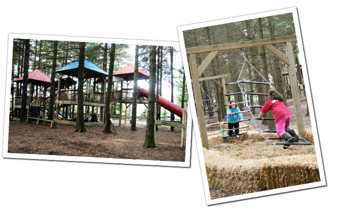 Swings, Slides and Climbers at Sloan's Village