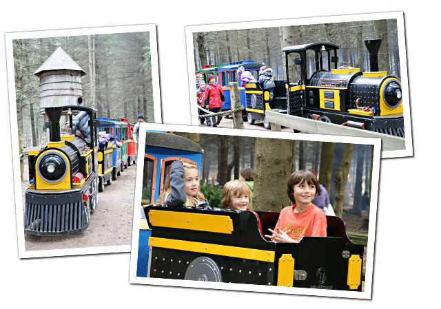 Train Ride Attraction at Sloan's Village